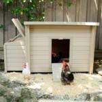 Ecoflex Hühnerstall mit Auslaufgitter aus 100% Recyclingmaterial