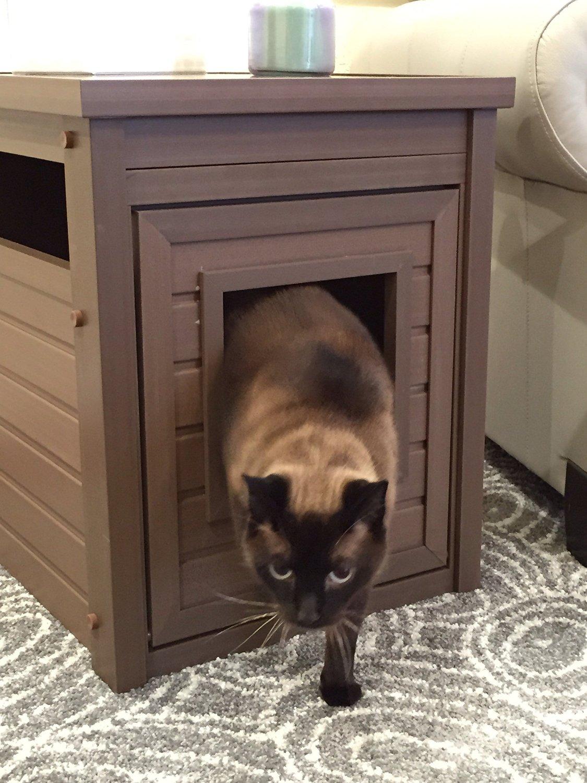 Katzentoilette Katzenklo